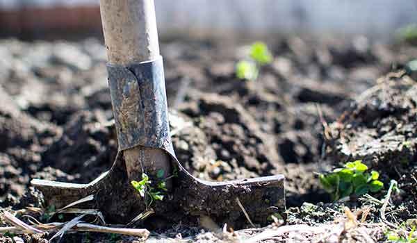 Garden Services Centurion